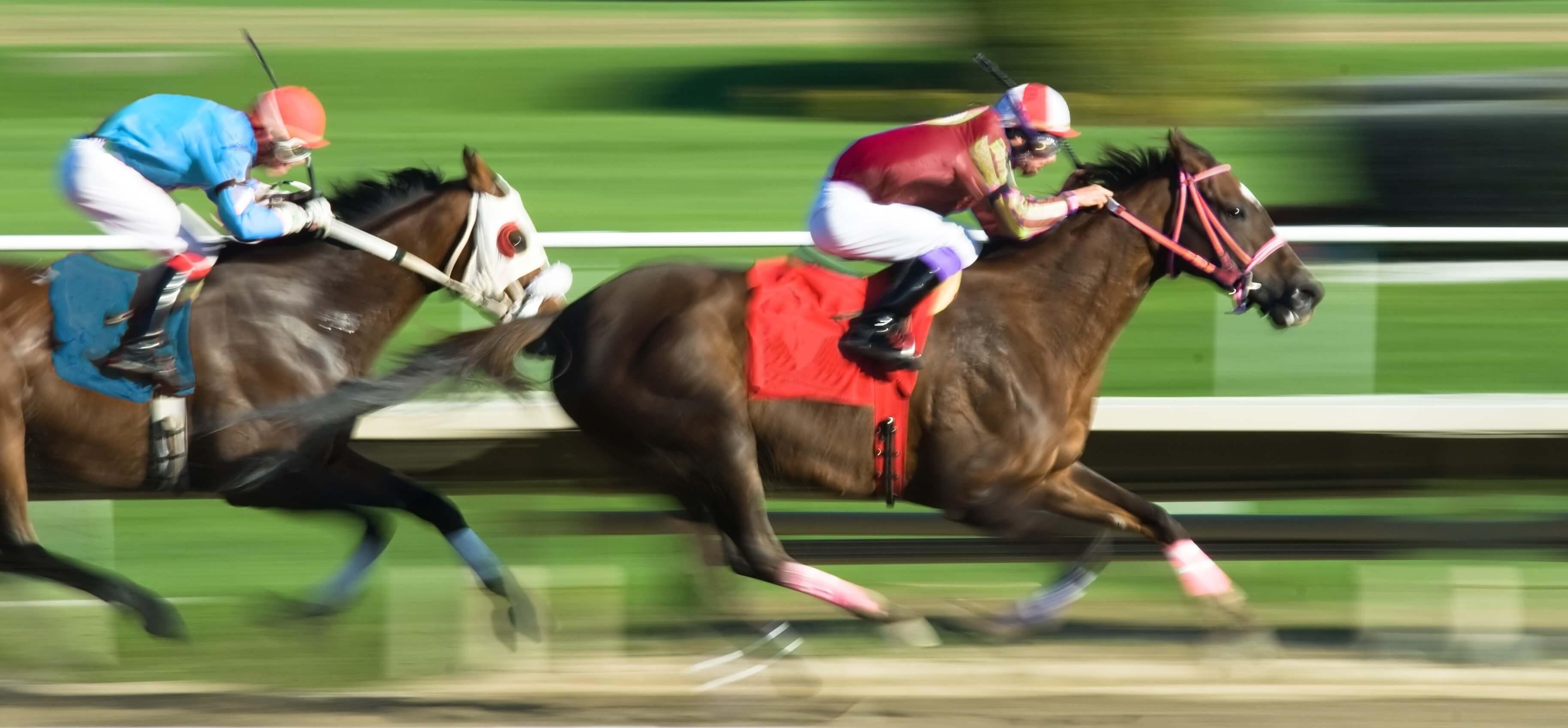 Horses Hyperbaric Chamber
